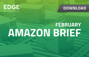 Download Amazon Brief / February